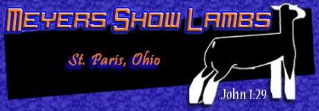 Meyers Show Lambs